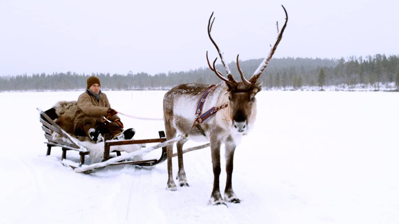 First Sleigh Ride in Finland