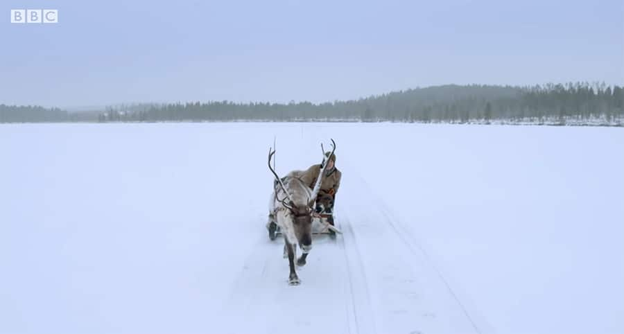 traveling by reindeer