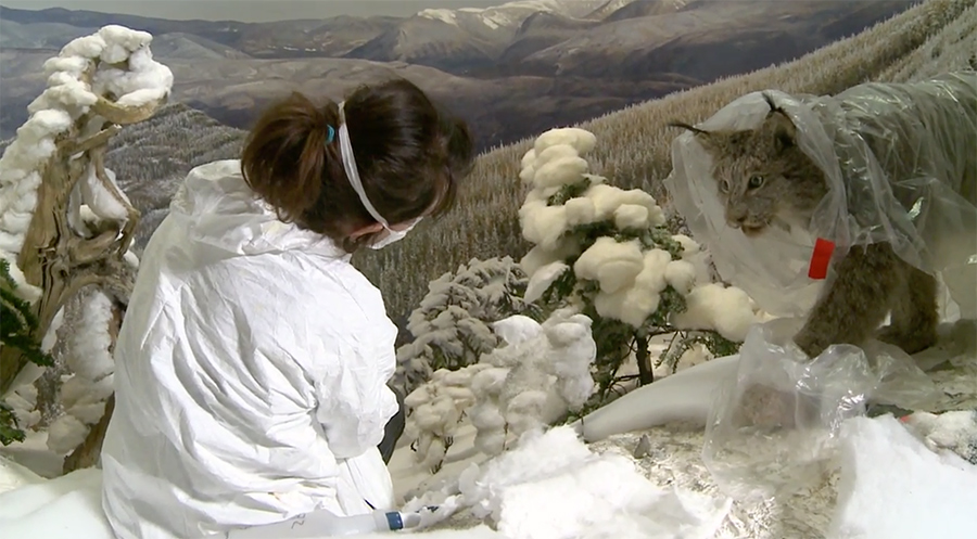 snow in the diorama