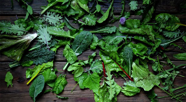 a mix of wild and garden greens