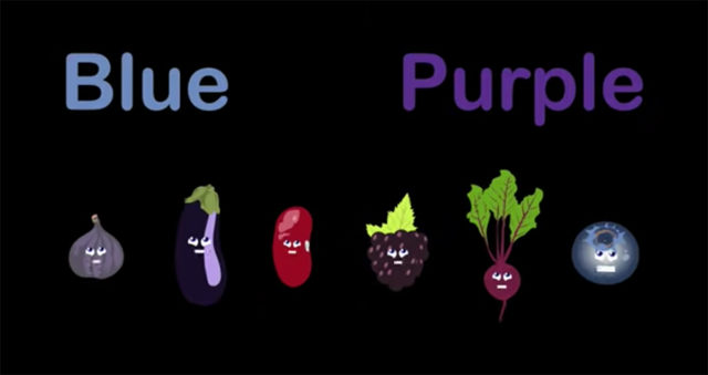 blue and purple foods to eat in your food rainbow