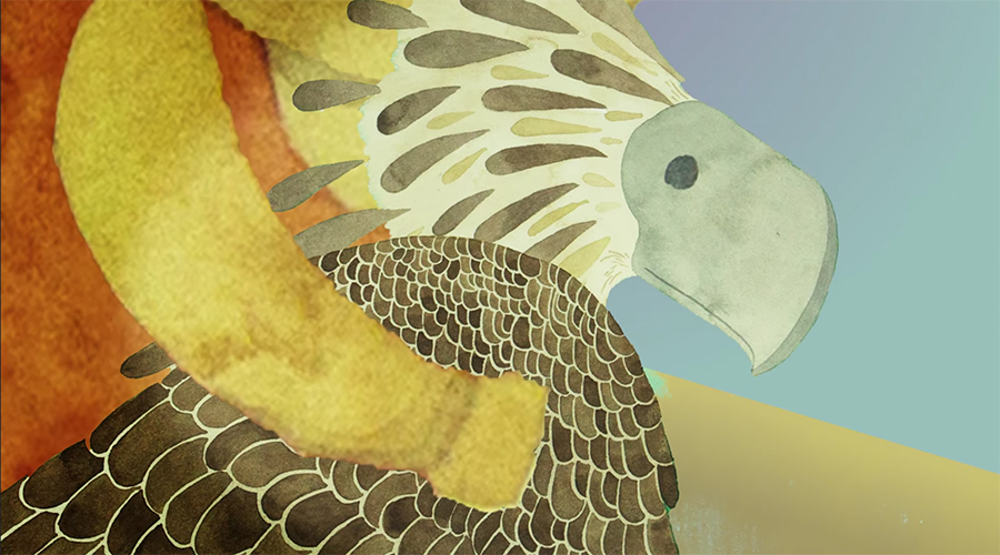 freedom for the Philippine eagle