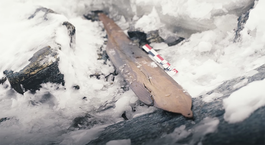 The extracted ski